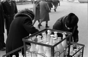 83-0705-feb-sticle-lapte-inghetate-pe-Colentina-14b